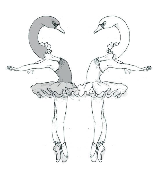 swan_sketch2