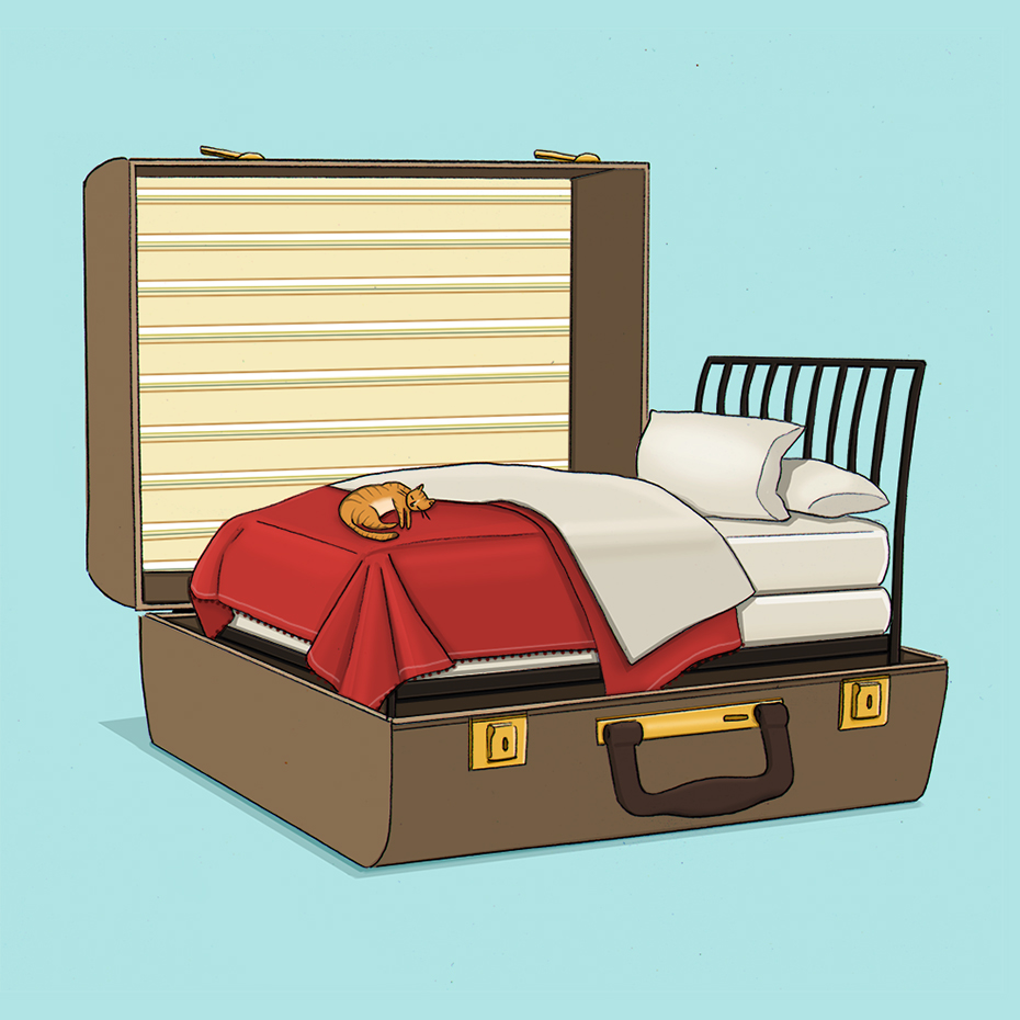 final suitcase bed